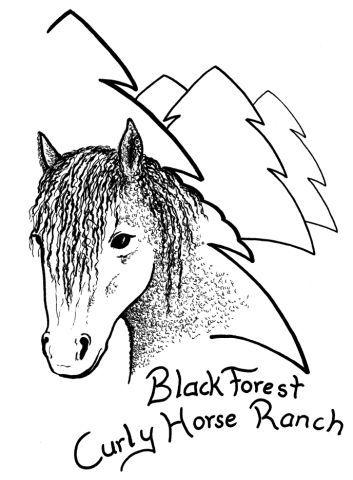 BFCurly Logo