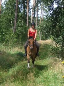 Ausritt mit Curly Horse Buck