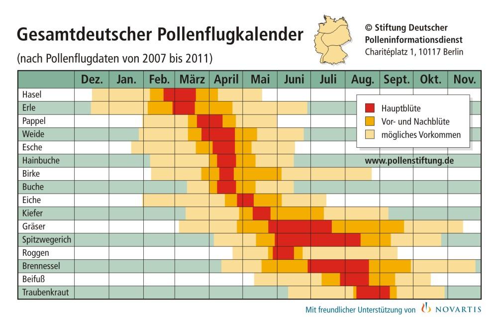 Pollenflugkalender Gesamtdeutschland | Zeitraum & Pollenflug Gräserallergie