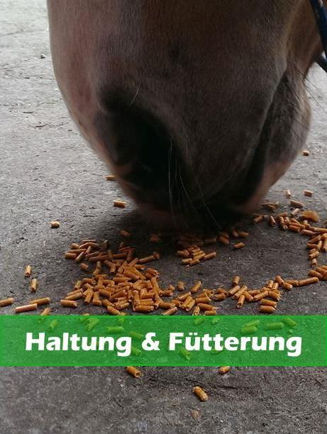 Forum Haltung und Fütterung